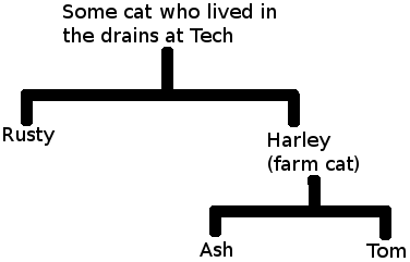 [Cat Family Tree]