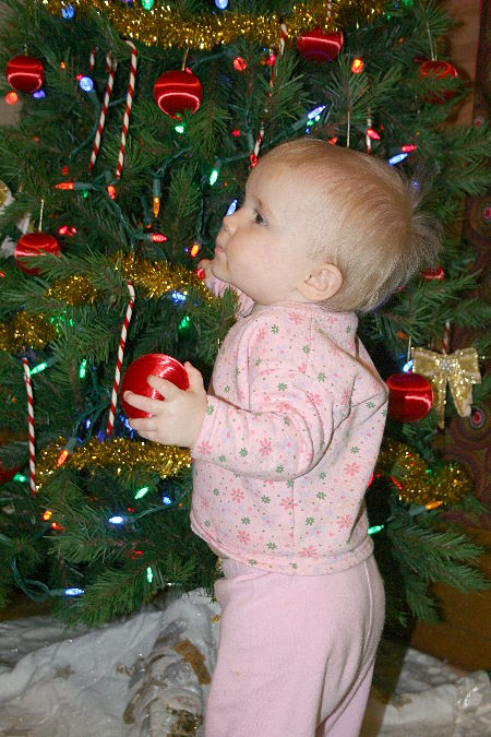 [Cate decorating the tree, 450px]